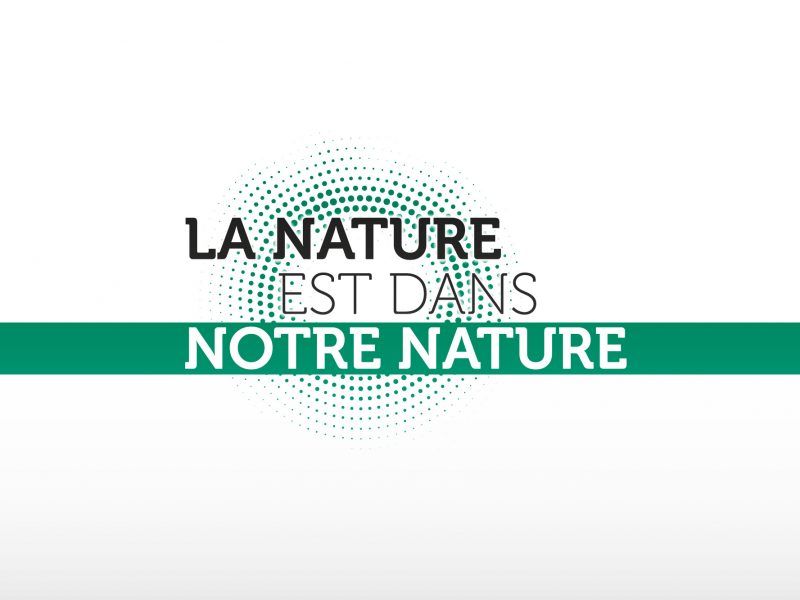 Logo campagne environnement